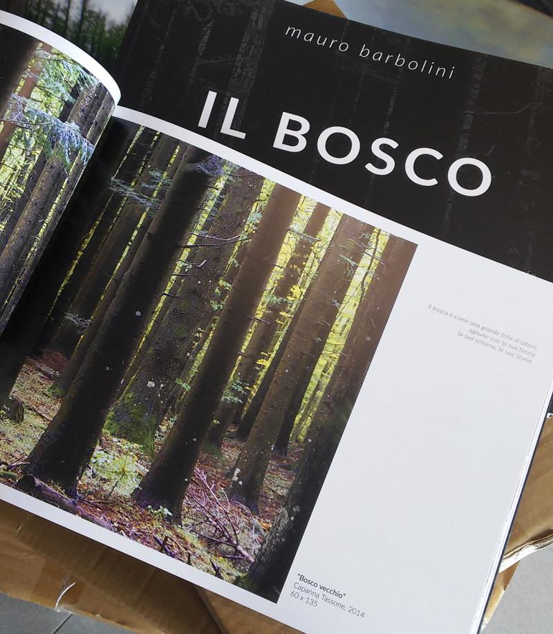 Libro fotografico Il Bosco